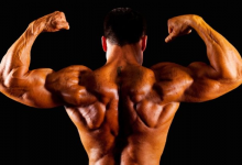 Photo of Definitive Proof That Stanozolol effect Is Just What You Need To Strengthen Body Immune System