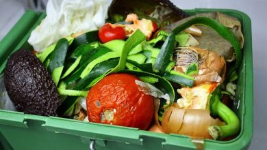 Photo of Understand the different methods for food waste management restaurant owners can follow!