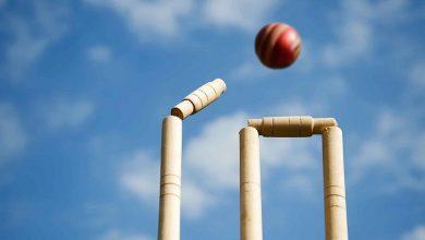 Photo of Play Fantasy Cricket And Earn Money