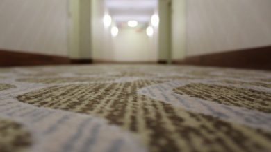Photo of The Most Important Factor to Consider During Carpet Installation – Cost!!