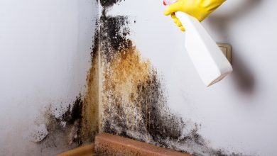 Photo of Get Ready For Winter To Avoid Mold