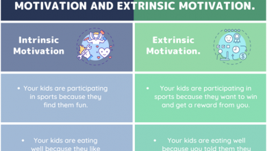 Photo of Intrinsic Motivation vs Extrinsic Motivation | How to Motivate Your Children?